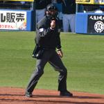週刊野球太郎 日刊トピック#28 記事画像#5