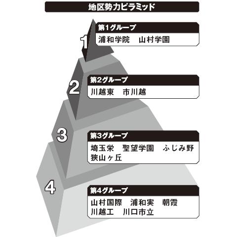 南埼玉 勢力ピラミッド